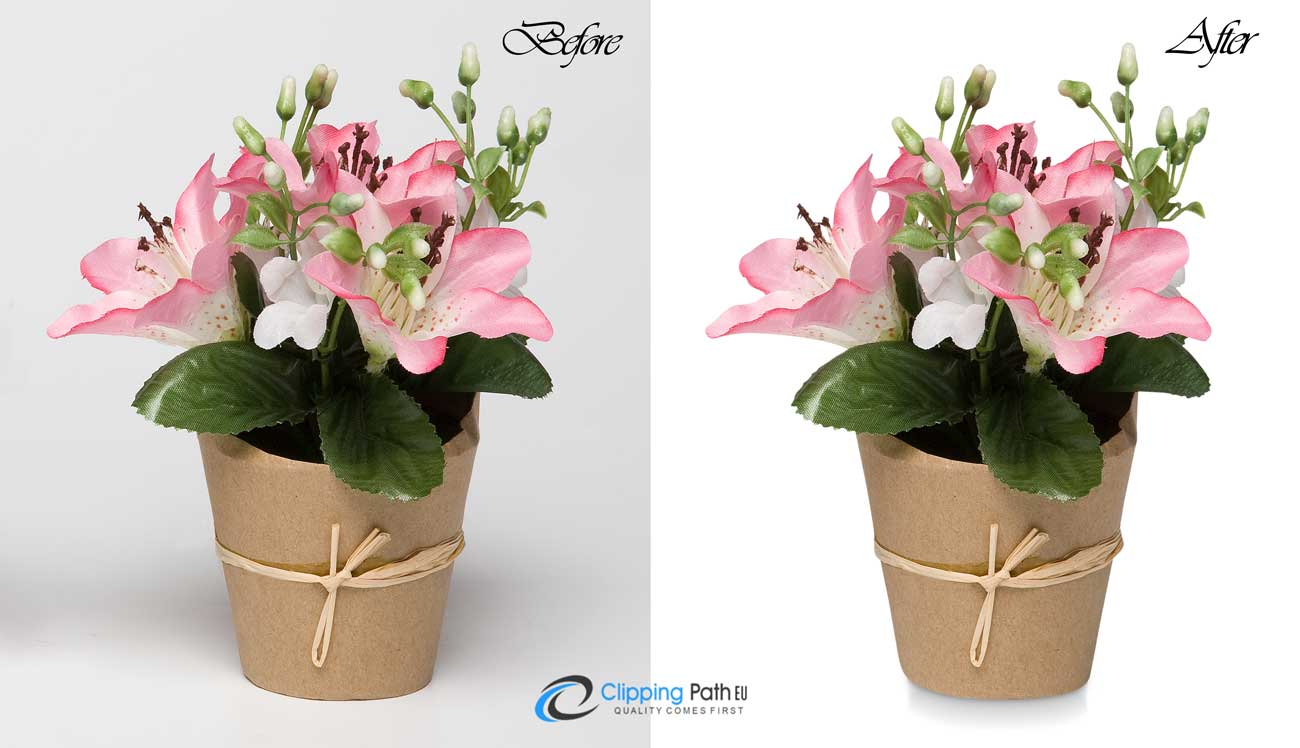 Drop Shadow | Flower photo editing service