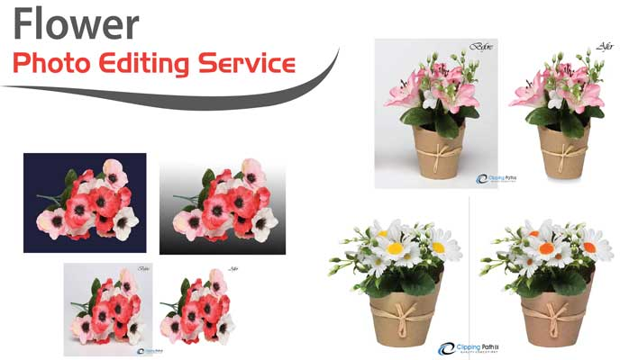 Flower Photo Editing service feature image