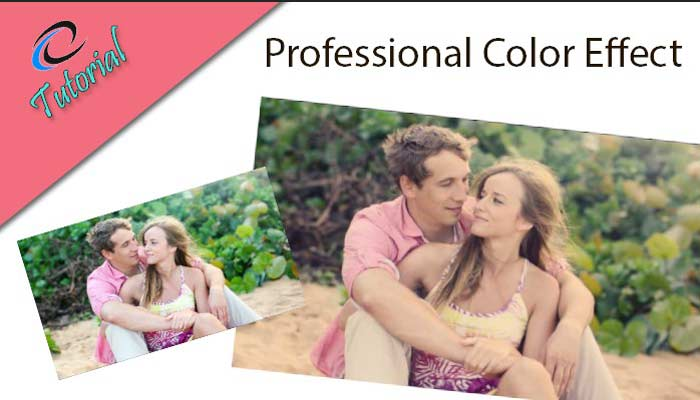 Professional-Color-effect-Feature-image